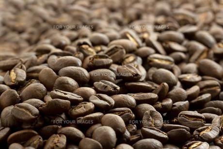 Coffee beansの写真素材 [FYI00659109]