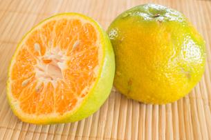 Fresh of an orange honeysuckleの写真素材 [FYI00659193]