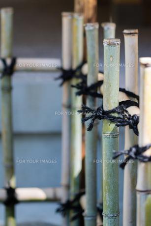 Japanese Bamboo Fenceの写真素材 [FYI00659209]