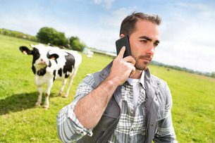 Young attractive farmer in a pasture with cows using mobileの写真素材 [FYI00659547]