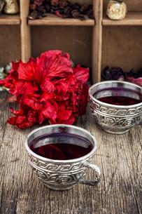 Hibiscus teaの写真素材 [FYI00660731]