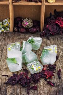 Hibiscus teaの写真素材 [FYI00660732]