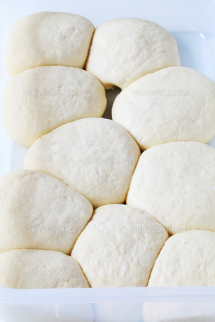 Yeast doughの素材 [FYI00661273]