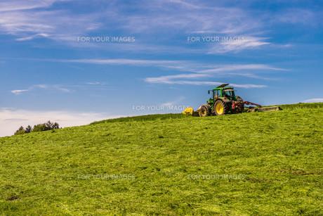 mowingの写真素材 [FYI00661556]