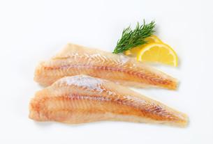 Fresh fish filletsの写真素材 [FYI00661972]