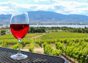 wine glass in front of blurry vineyard (L)の写真素材 [FYI00661984]
