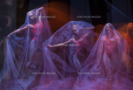 sensual and emotional dance of beautiful ballerina through the veilの写真素材 [FYI00662165]
