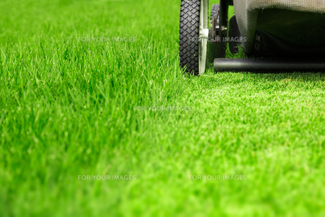 Lawn mowerの写真素材 [FYI00662335]