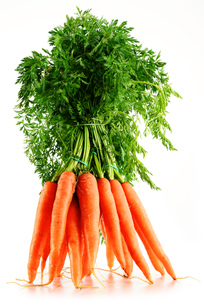 Fresh carrots bunch isolated on whiteの写真素材 [FYI00662384]