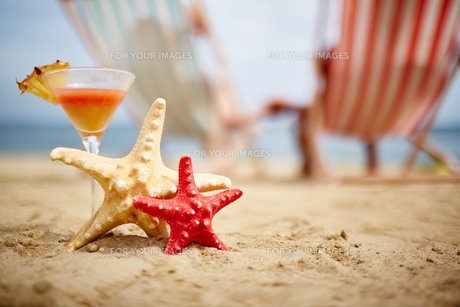 Sea stars and cocktailの写真素材 [FYI00662478]