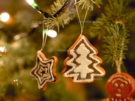 Gingerbread tree Christmas Marketの写真素材 [FYI00662815]