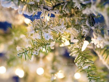 Brachnes Christmas Marketの写真素材 [FYI00662817]