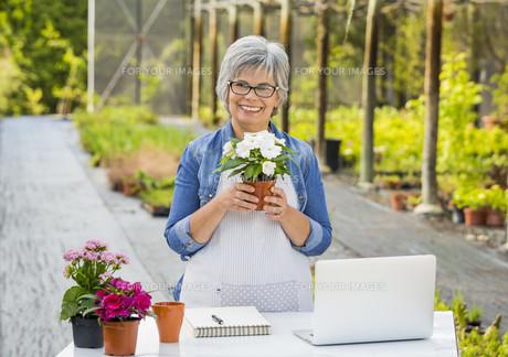Working in a flower shopの写真素材 [FYI00663690]