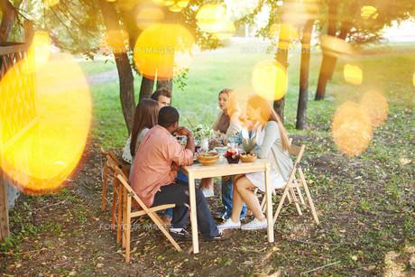 Outdoor dinnerの素材 [FYI00663829]