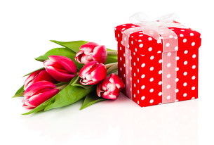 beautiful tulips with red gift boxの写真素材 [FYI00663947]