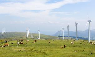 Wind turbines on a wind farm in Galicia, Spainの写真素材 [FYI00664097]
