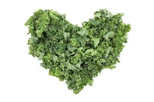 Shredded kale in a heart shapeの写真素材 [FYI00664117]