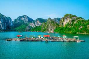 Floating fishing village in Halong Bayの写真素材 [FYI00664453]