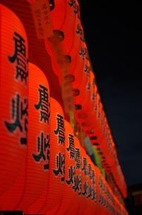 伏見稲荷大社 提灯の写真素材 [FYI00664859]