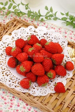 苺の写真素材 [FYI00665016]