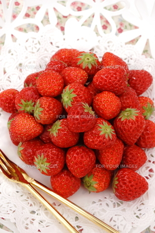 苺の写真素材 [FYI00665022]