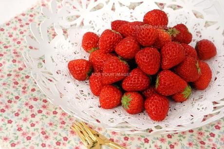 苺の写真素材 [FYI00665026]