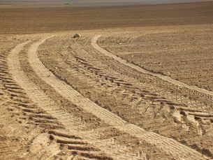 plowed fieldの素材 [FYI00665419]