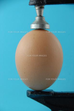 egg in viseの素材 [FYI00665433]