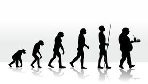 evolution2708dの写真素材 [FYI00666289]