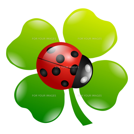 green shamrock symbolの素材 [FYI00666703]