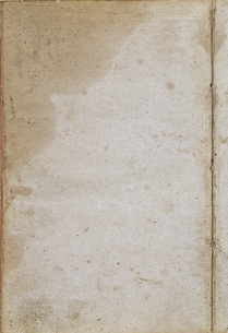 paper,old,background,texture,yellowed spotsの写真素材 [FYI00667315]