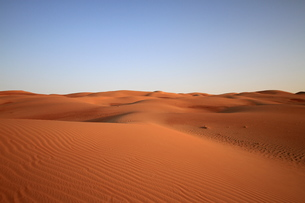 alone in the desertの写真素材 [FYI00668059]