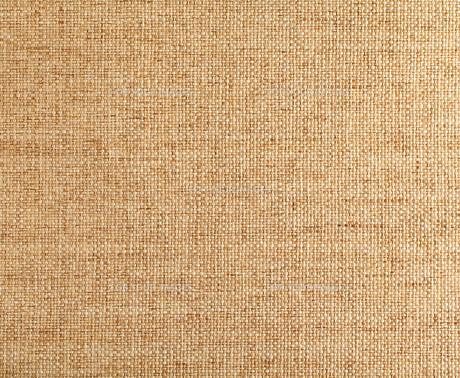 brownの写真素材 [FYI00668228]