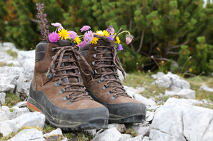 walking shoes with flowers in the mountainsの素材 [FYI00668554]