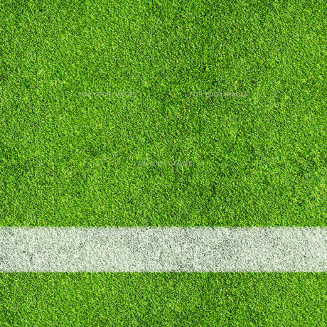 grass_fieldsの写真素材 [FYI00668702]
