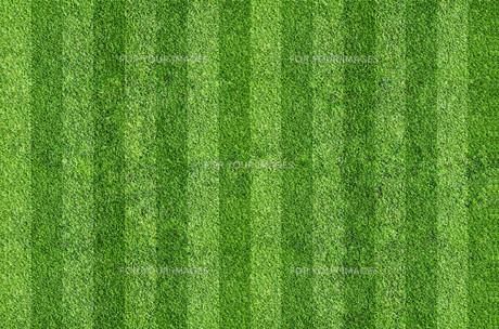 grass_fieldsの写真素材 [FYI00668708]