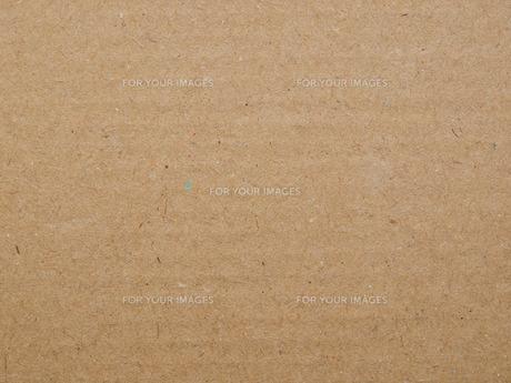 brownの写真素材 [FYI00668888]