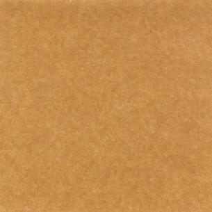 brownの素材 [FYI00669837]