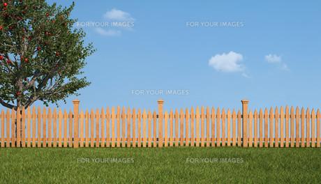 grass_fieldsの写真素材 [FYI00669971]