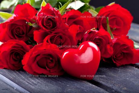 rosesの写真素材 [FYI00670058]