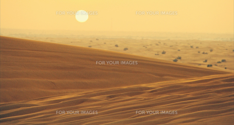evening in the desertの素材 [FYI00670744]