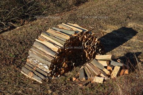woodpileの素材 [FYI00670887]