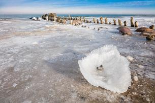 winterの写真素材 [FYI00672590]