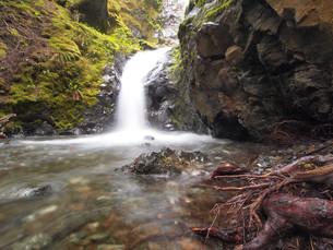 little waterfallの写真素材 [FYI00672648]