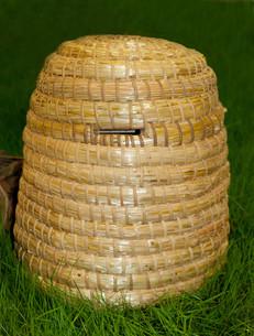 hive for honey productionの写真素材 [FYI00672661]