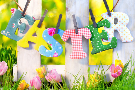 happy easter at the garden fenceの写真素材 [FYI00673489]