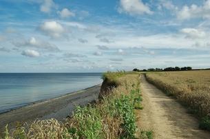 cliffs between the baltic seaside sch?nhagen and dampの素材 [FYI00673988]