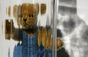 teddy with perspectiveの写真素材 [FYI00674859]