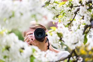 plants_flowersの写真素材 [FYI00675317]