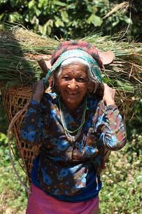 women in nepalの素材 [FYI00677354]